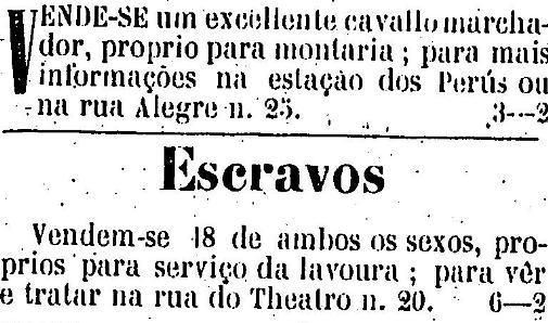 1880_03_13-cavalo-e-escravos2