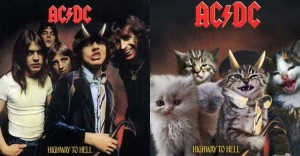 cat_albums-600x313