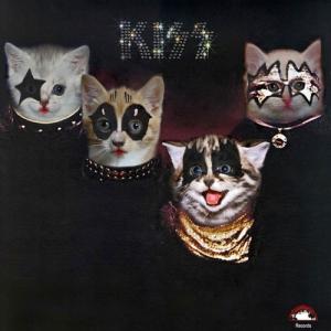 Kiss-Gato