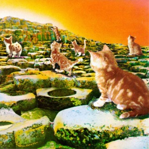 Led-Zeppelin-Gato